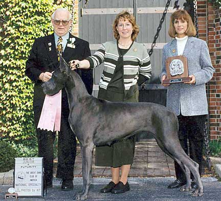 Growth Rate Great Danes Growth Chart Greatdanelady